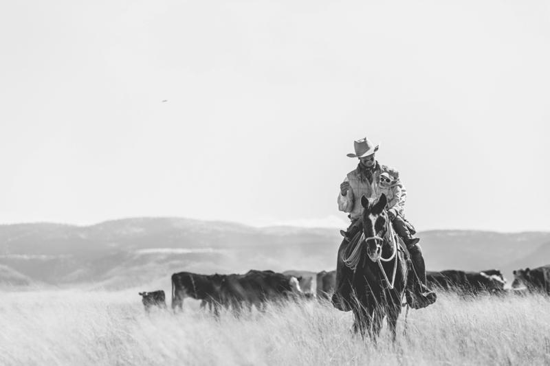 cowboys_daughter-0799.jpg