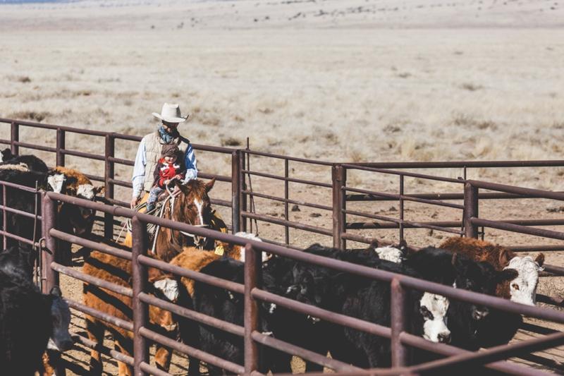 cowboys_daughter-9627.jpg