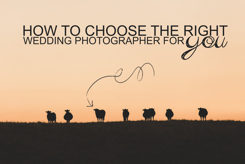 How to choose the right Wedding Photographer for YOU!