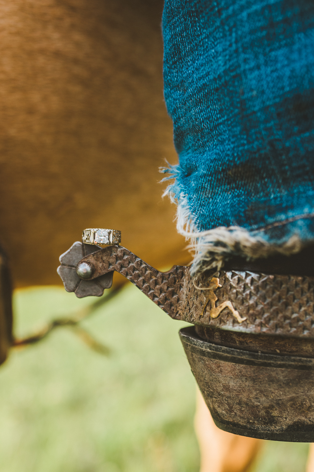 Montana Ranch Engagement   Western, Ranchlife, Lifestyle, Cowboy, Cowgirl, Cattle, Horse,