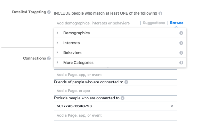 Screenshot of Facebook Ads' custom audience feature.