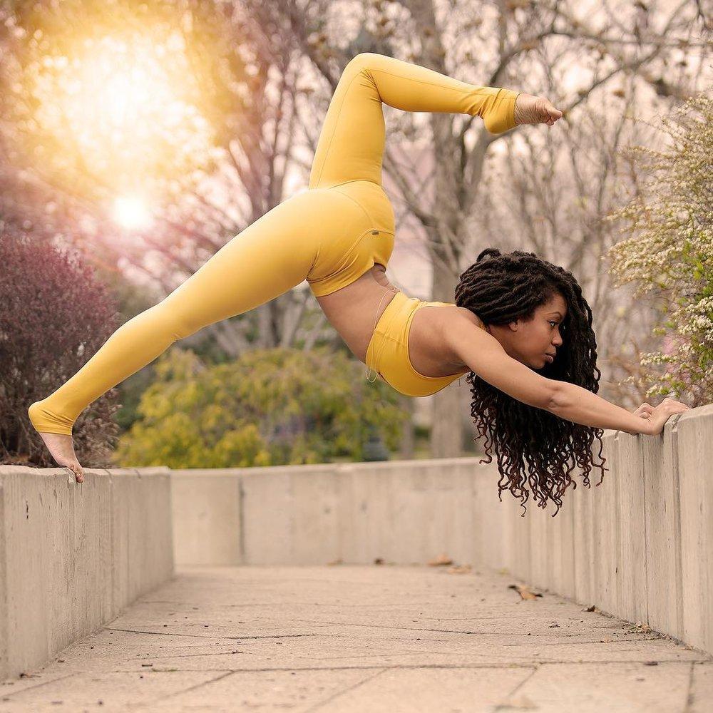 yogi3.jpg