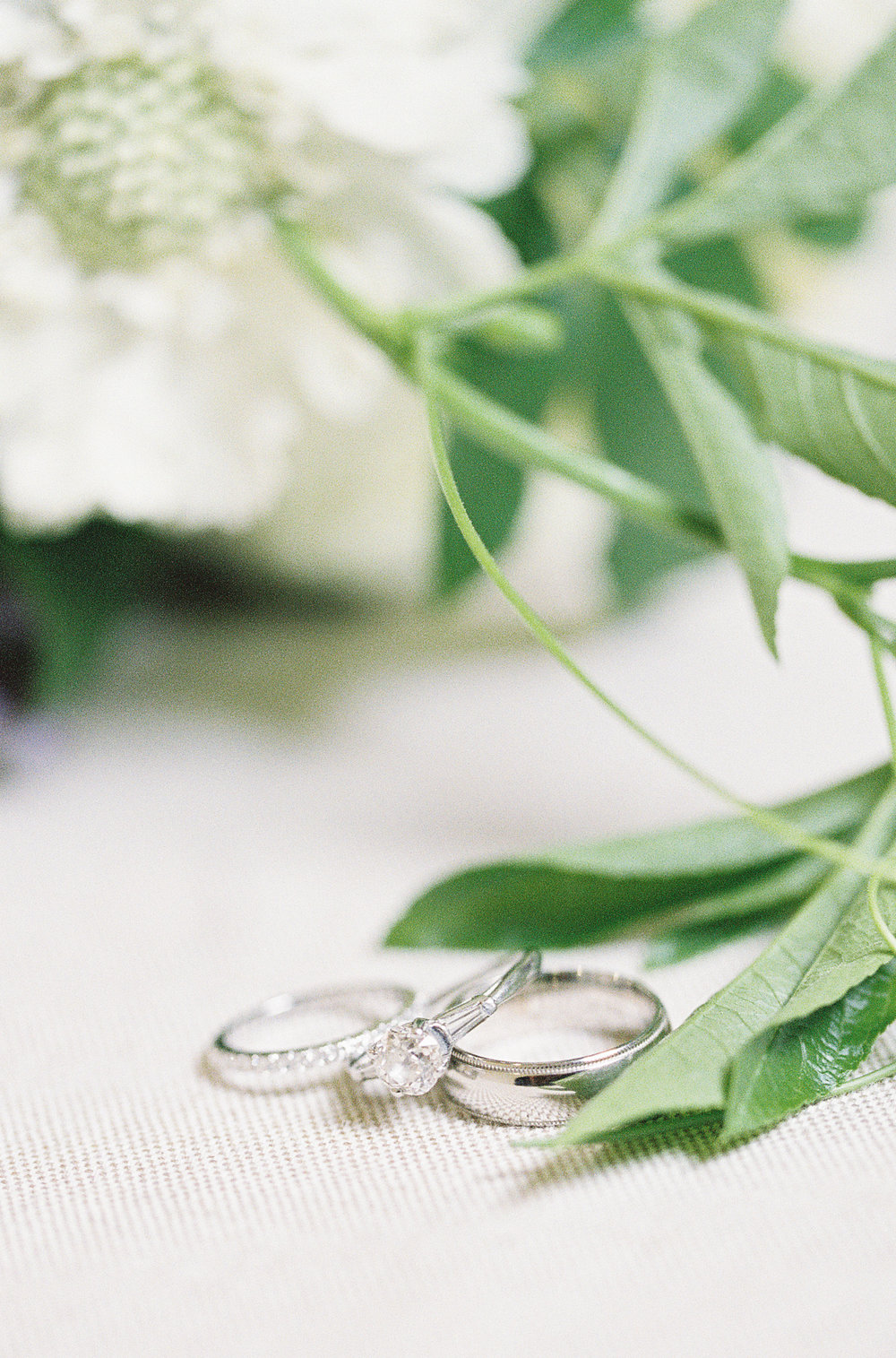 Mint Photography Rings