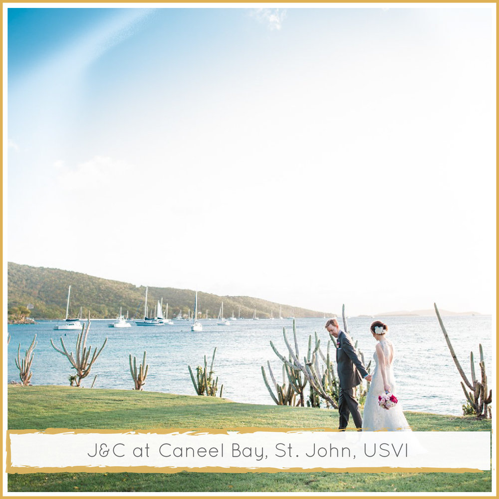Caneel Bay St. John Wedding