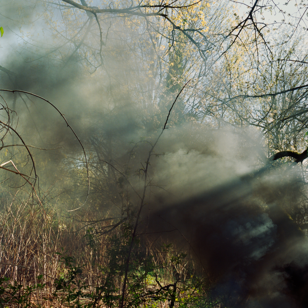 junglesmoke.jpg