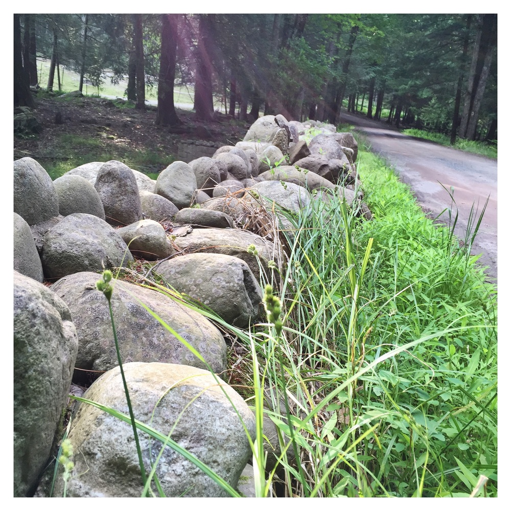 Choose the rocky path instead of the smooth, easy. More growth awaits!