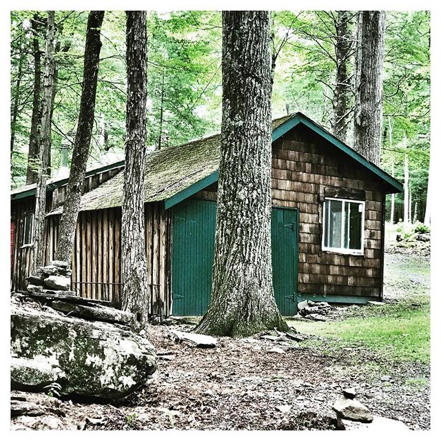 Cabin Art Under Towering Trees. #sullivancatskills #catskills #catskillsny #inthewoods #forestburgh #countrygirllife #countrylife #upstatelife #upstateny #upstateliving #cabinlife