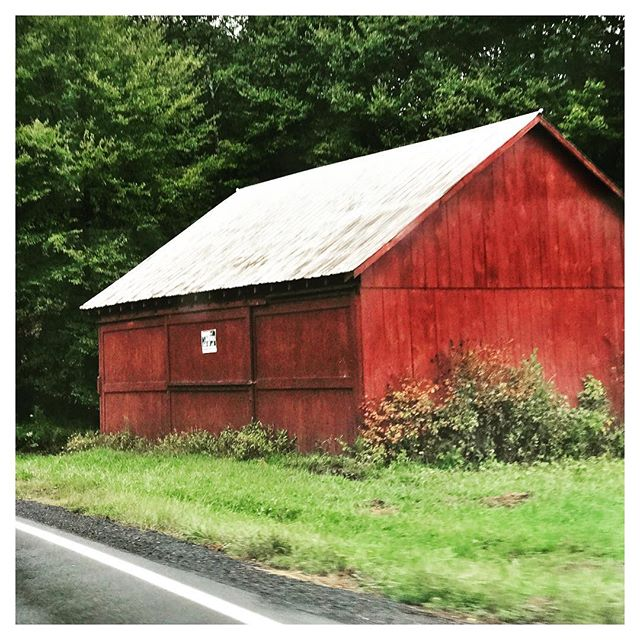 Driving The Catskills #Eyecandy #sullivancounty #sullivancatskills #catskillsliving #countrygirllife #barnlove #inthewoods #inthecountry #upstatelife #upstatenewyork #weekendtrip