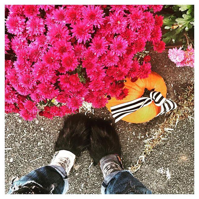 Ahhhhhhh That Autumn Feeling! #upstatelife #sullivancatskills #sullivancounty #inthewoods #forestburgh #forestburghgeneral #catskillsliving #autumnmood #inthecountry #weekendgetaway