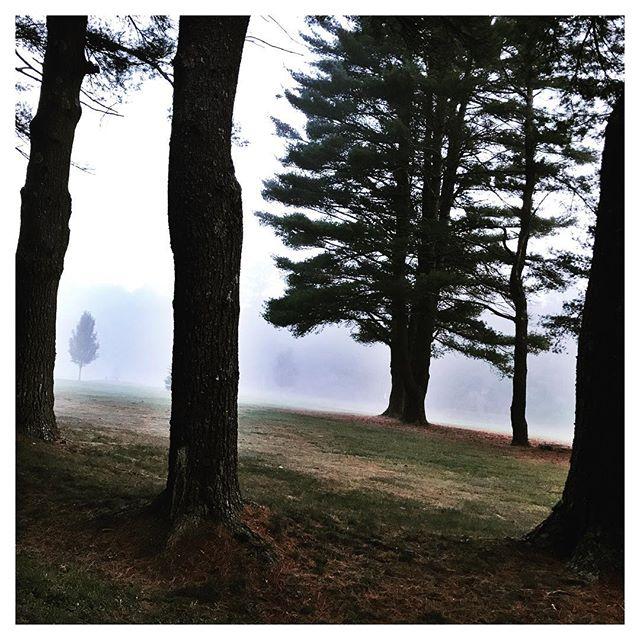 Silence.  The Gift Of A Catskill Morning. #catskillsliving #upstateny #upstatelife #inthewoods #sullivancatskills #sullivancounty #countrygirl #countrygirllife #forestburgh #forestburghgeneral