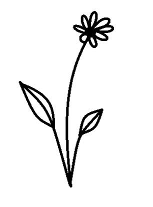 flipped flower.jpg