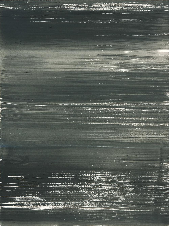 Schist 12 , 2011 casein on paper 15 x 11 in.