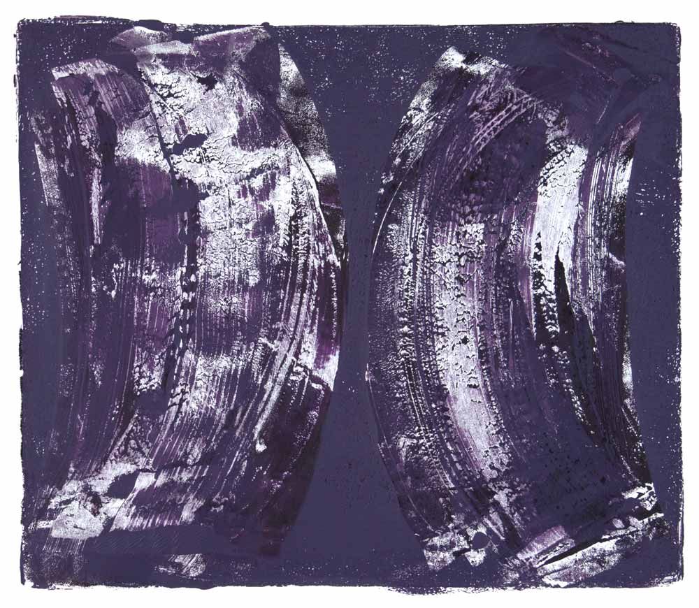 Ribs 5,  2017 Monotype Image 12 x 14 in. Sheet 16 x 18 in.
