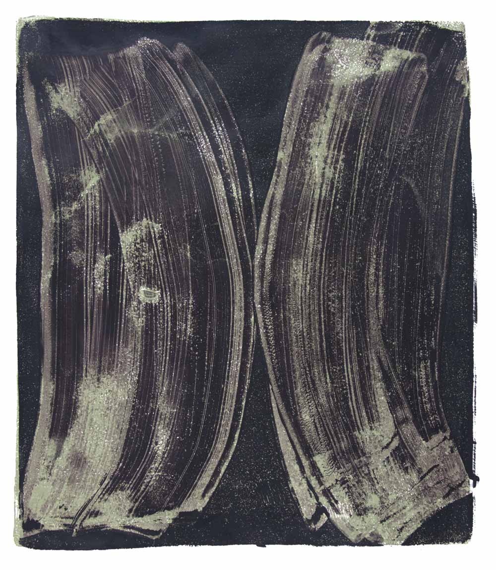 Ribs 11,  2017 Monotype Image 14 x 12 in. Sheet 18 x 16 in.