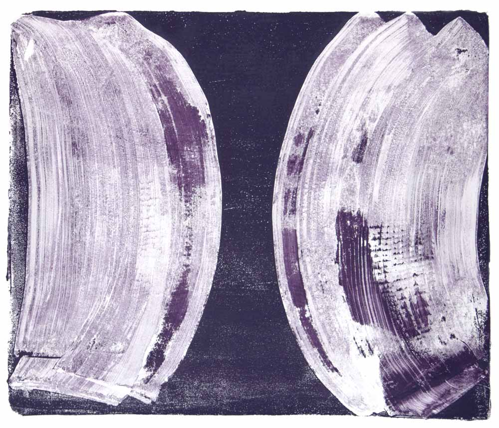 Ribs 17,  2017 Monotype Image 12 x 14 in. Sheet 14.75 x 18 in.