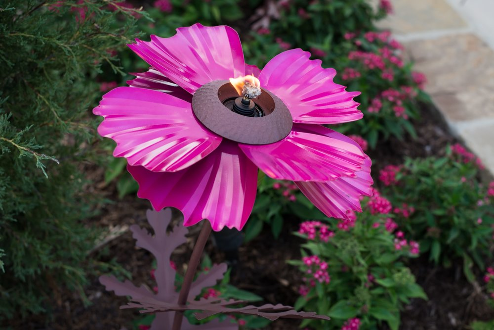 Pink Cosmos Torch