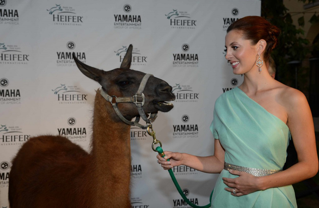 Eva Amurri Martino with special guest. © Heifer International
