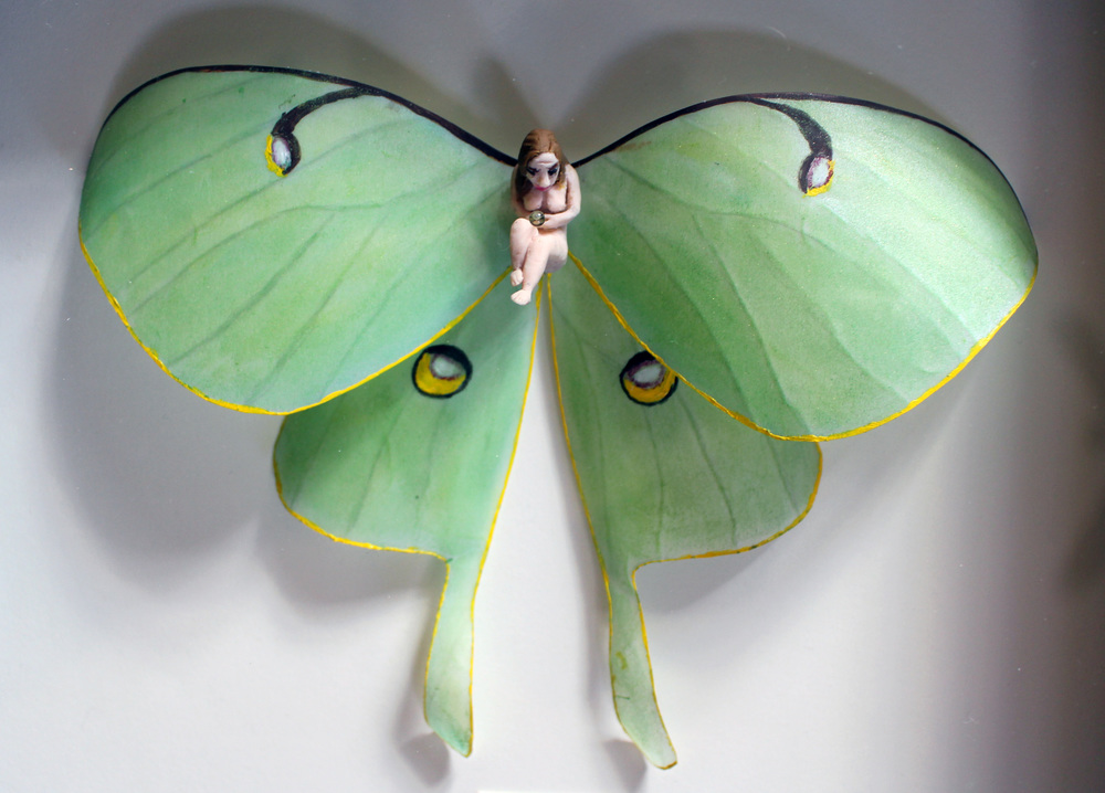 Entomology of a Developing Feminist (Actias luna Detail)