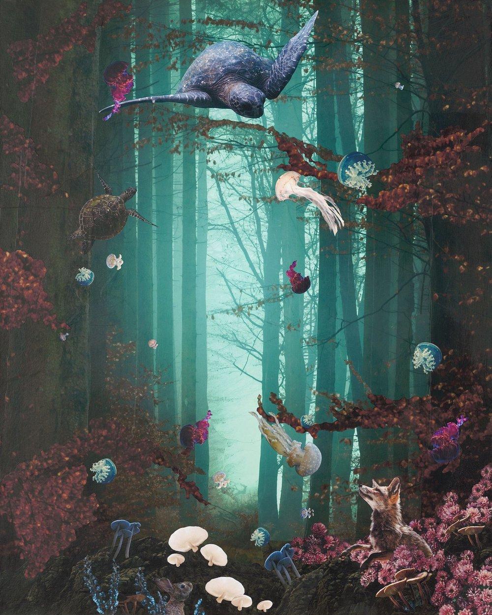 JellyfishWaltz_TannehillLowRes.jpg