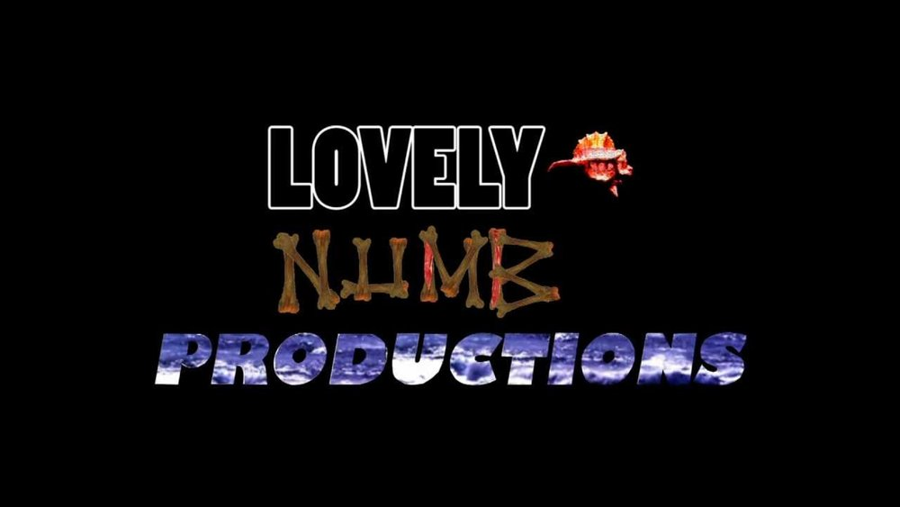 Lovely Numb Productions