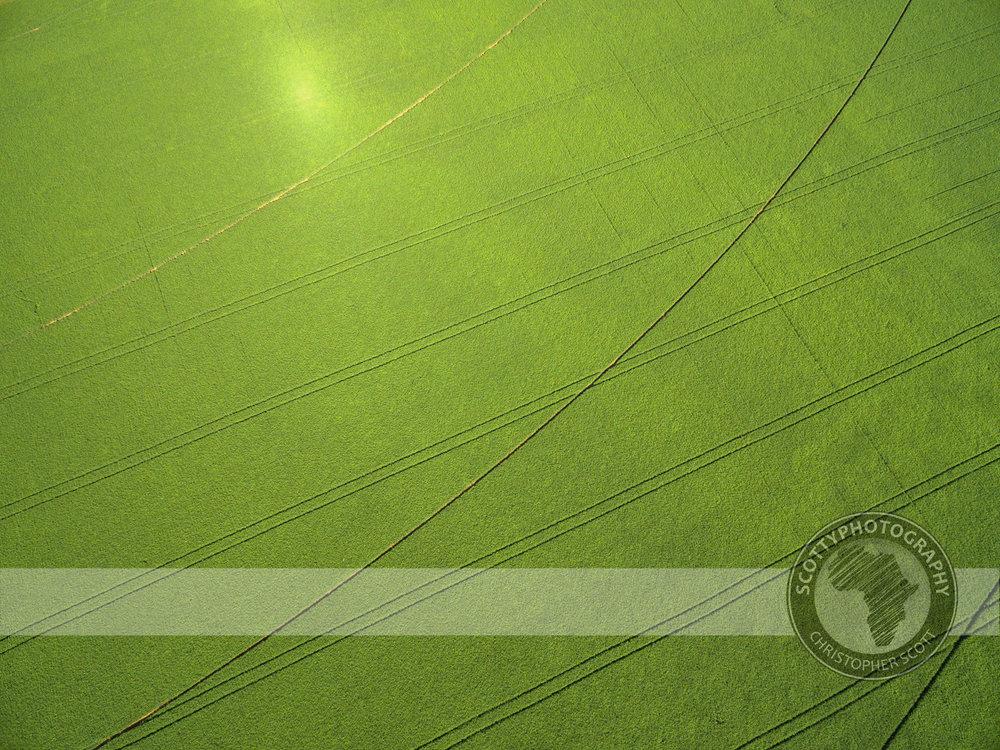 SeedCo aerial (3).jpg