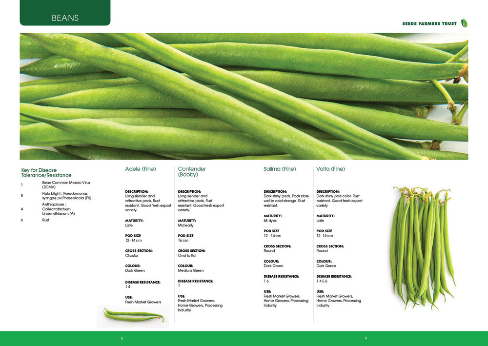 Prime Seed Catalogue A55.jpg