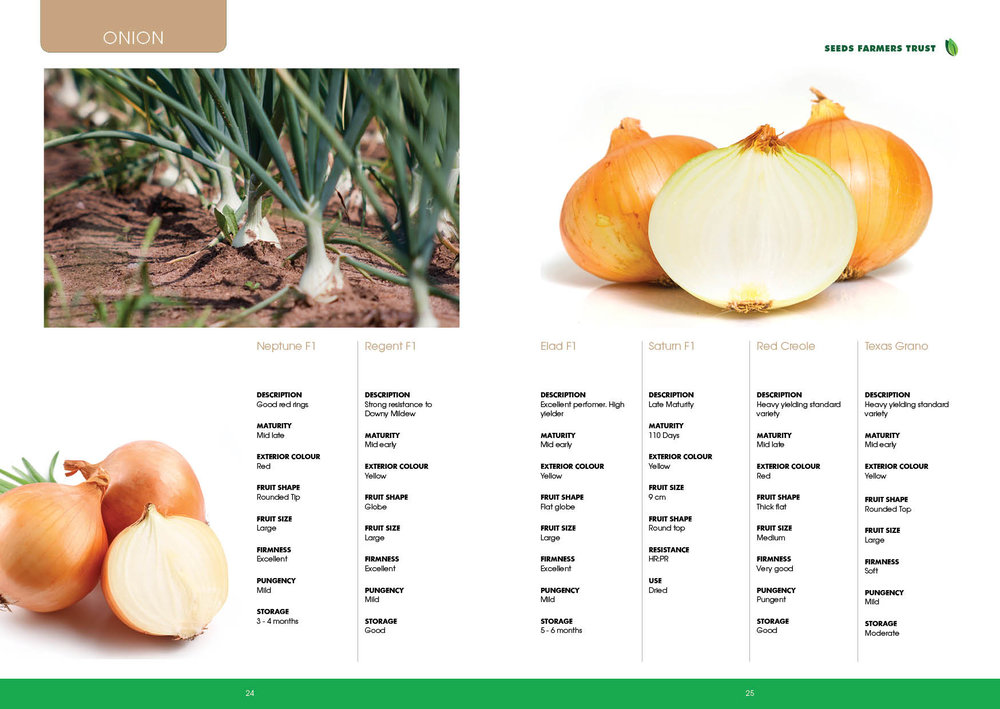 Prime Seed Catalogue A513.jpg