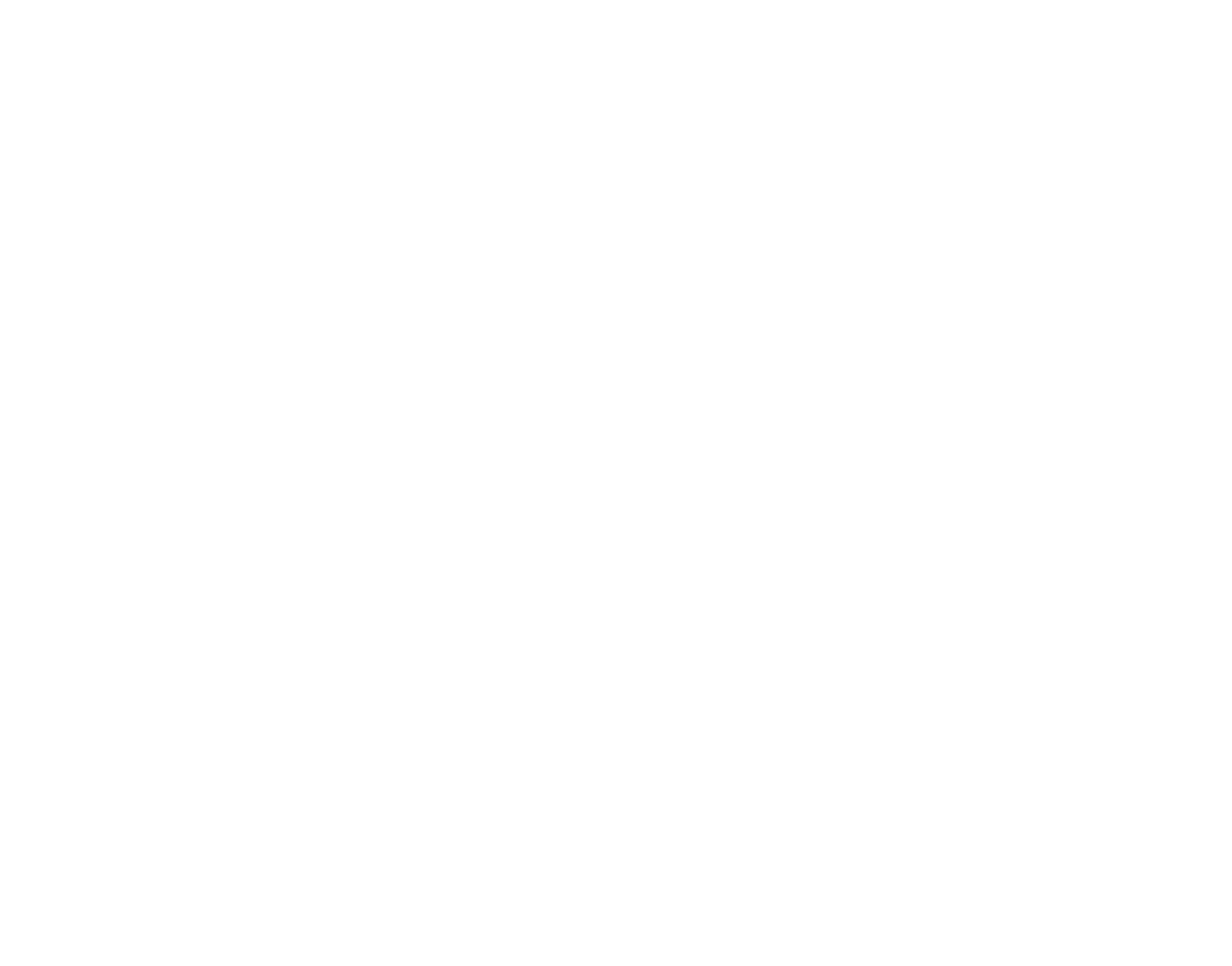 Roadrunner Fried Chicken