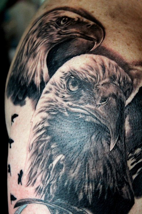 eagles2.jpg
