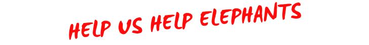 HELP US HELP ELEPHANTS.png