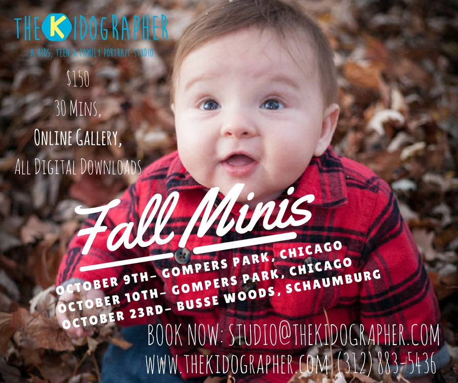 Chicago Fall Mini Session Photographer