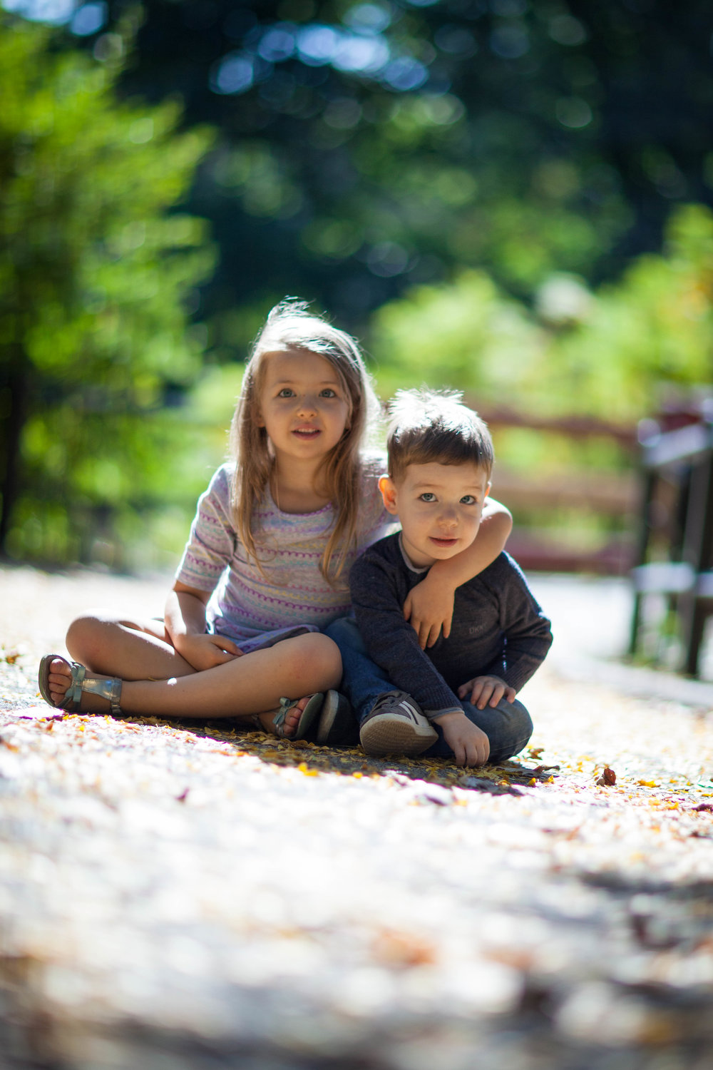 chicago and suburbs family photographer