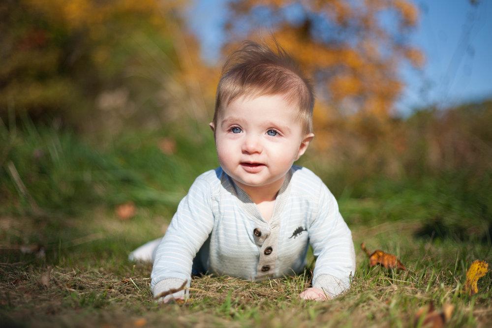 Busse Woods Baby Portrait