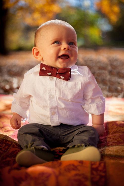 Chicago Baby Milestone photographer