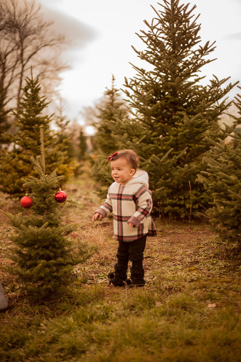 baby holiday photographer