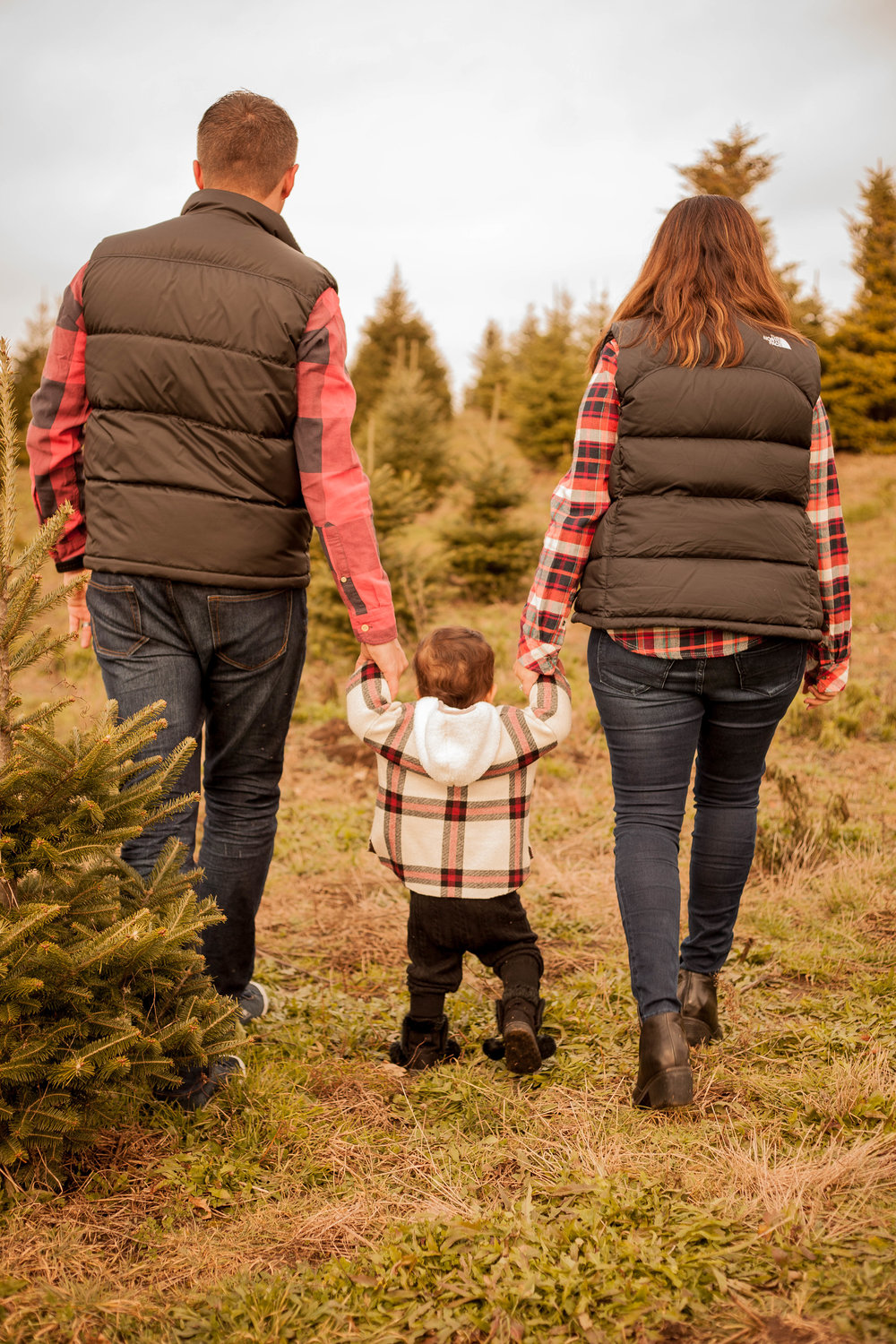 chicago family holiday portrait photographer