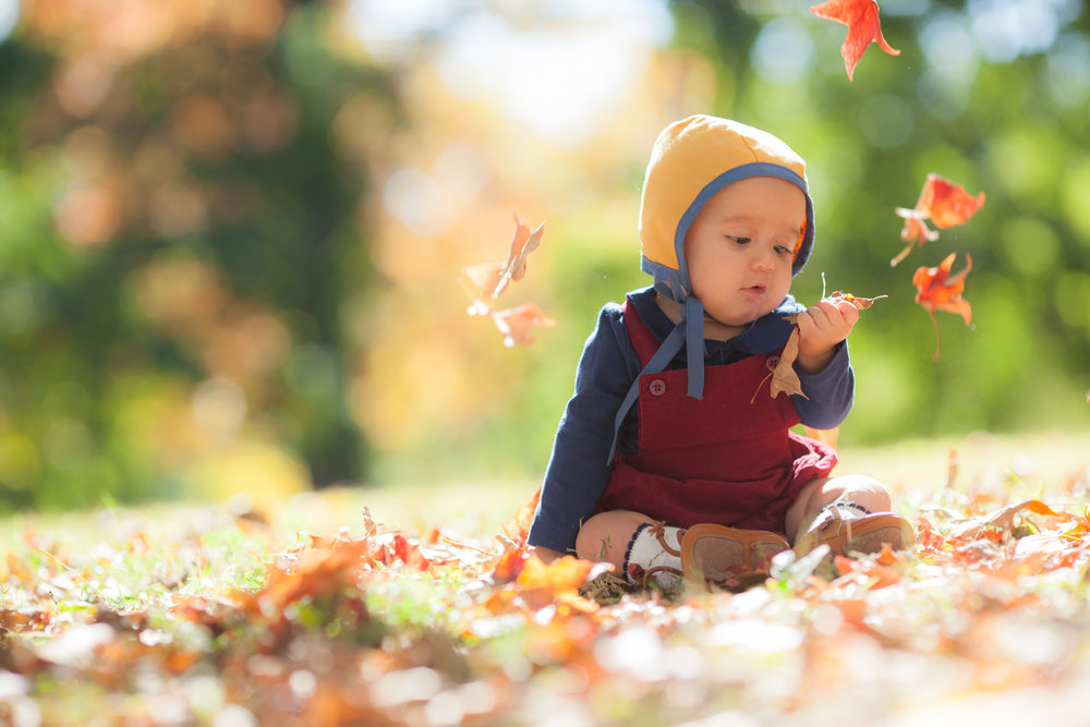 fall mini sessions in chicago 2018
