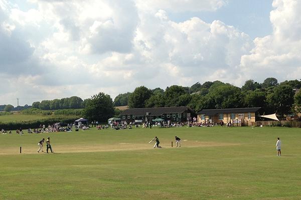 cricket_600x400.jpg