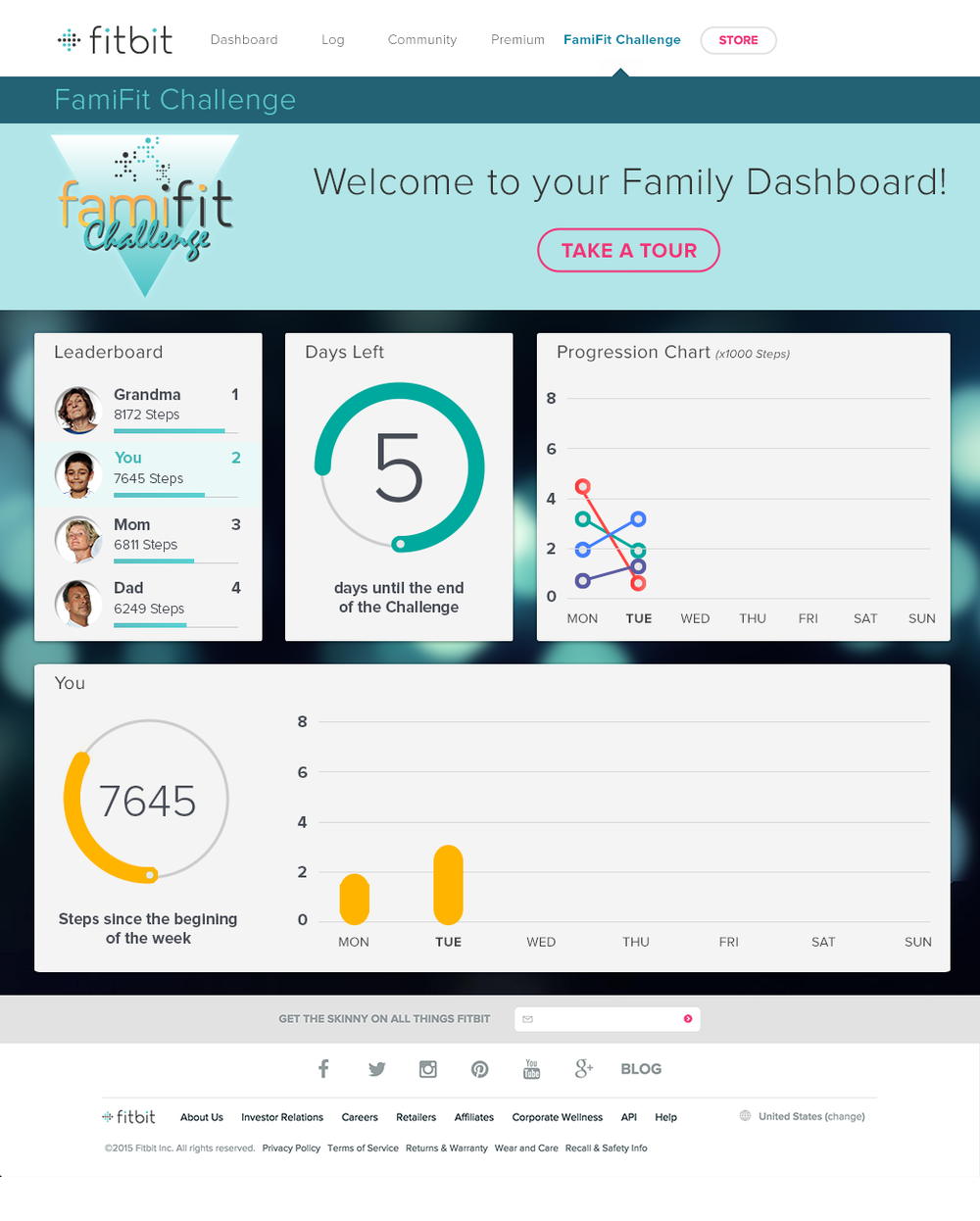 Fitbit_Website_03_Dashboard.png