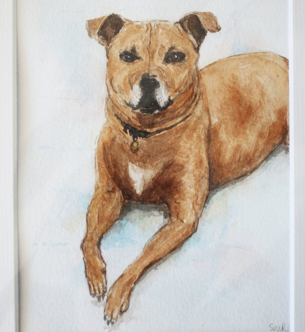 Pet Portrait 3.jpg