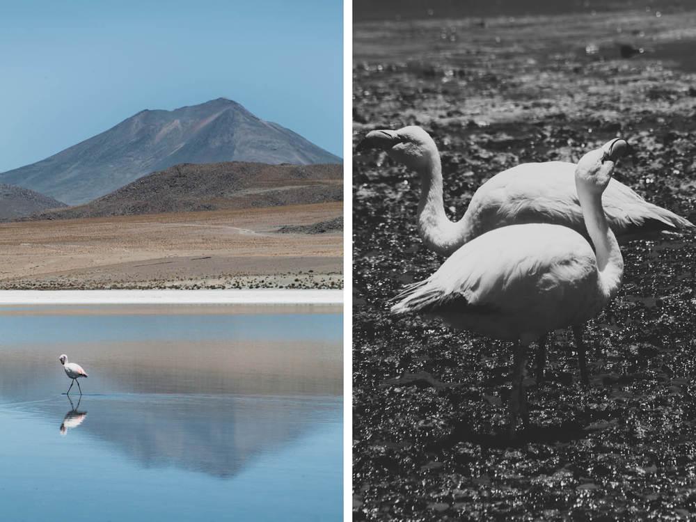Evabloem-Salar-de-Uyuni_Bolivia-0101-2.jpg