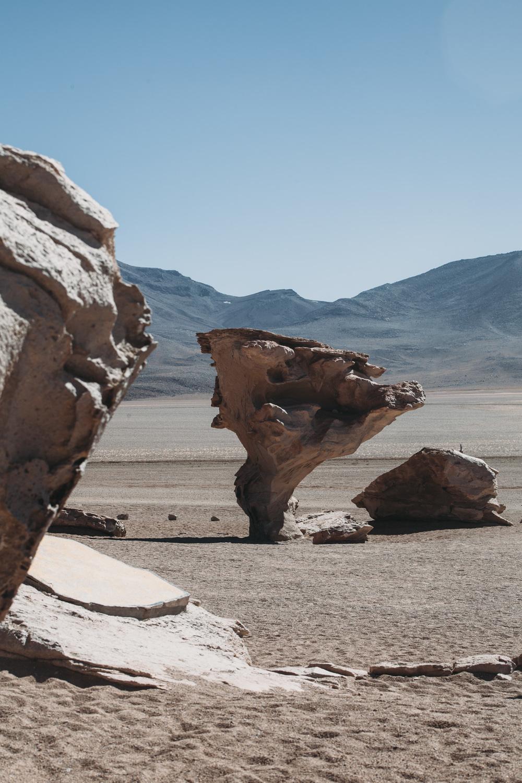 Evabloem-Salar-de-Uyuni_Bolivia-0144.jpg