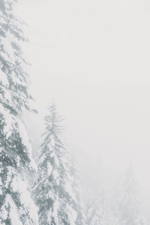Evabloem_travel_wintersports_le-grande-massif-0050.jpg