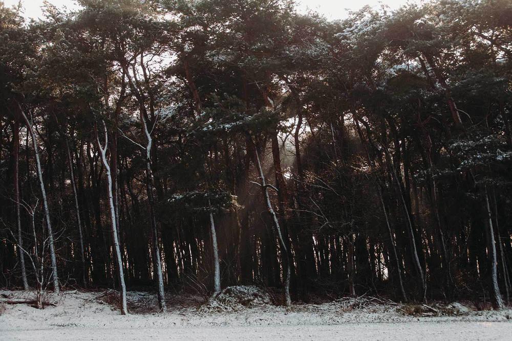 Evabloemweddings_bruidsfotografie_winterbruiloft_056.jpg