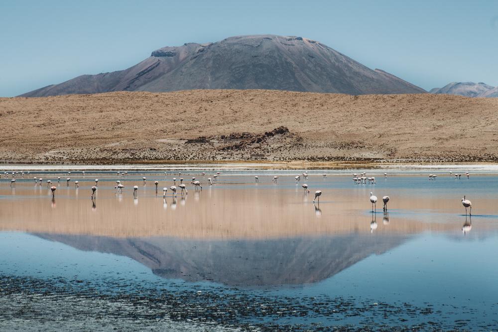 Evabloem-Salar-de-Uyuni_Bolivia-0102.jpg