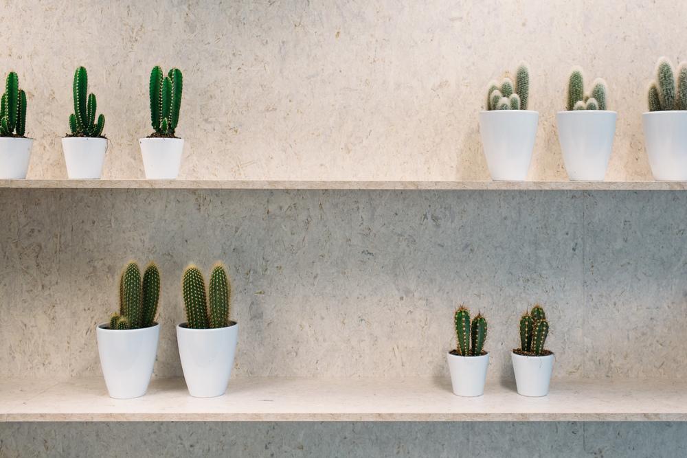 0064-interieur-kantoor-Prinsenhof_Evabloem-fotografie.jpg