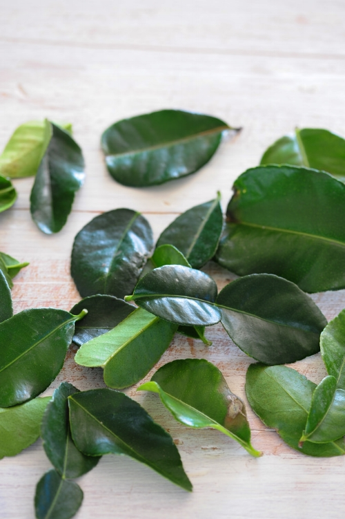The lime leaves add a unique and delicious flavour