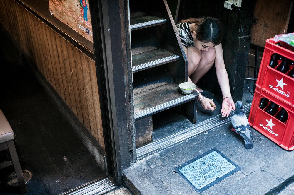 japanese-alleyway-pigeon-2000.jpg
