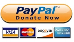 Paypal-logo-20141sml.png