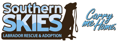 Southern Skies Labrador Rescue & Adoption